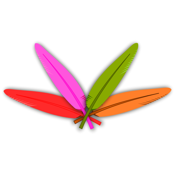 Vector clip art of four crossed color feathers