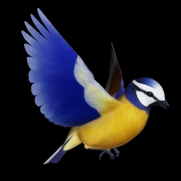 Vector clip art of colorful bird