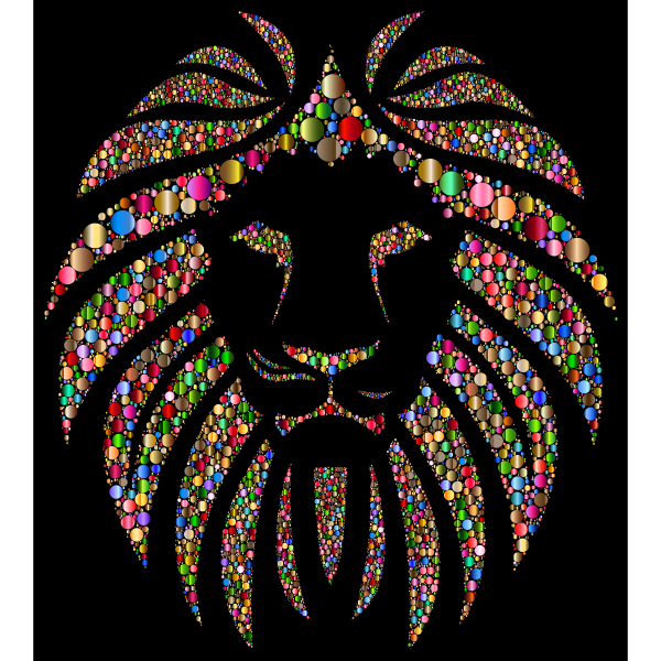 Colorful Lion Circles 4