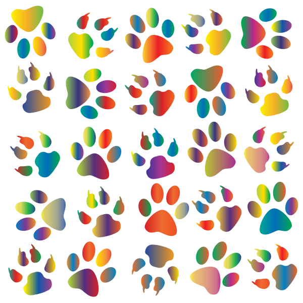 Colorful Paw Prints Pattern Background Reinvigorated 4 No Black background