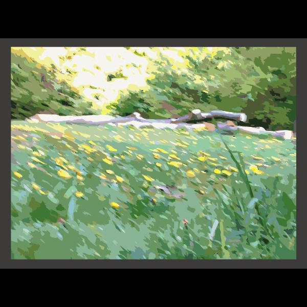 Dandelion in Forest
