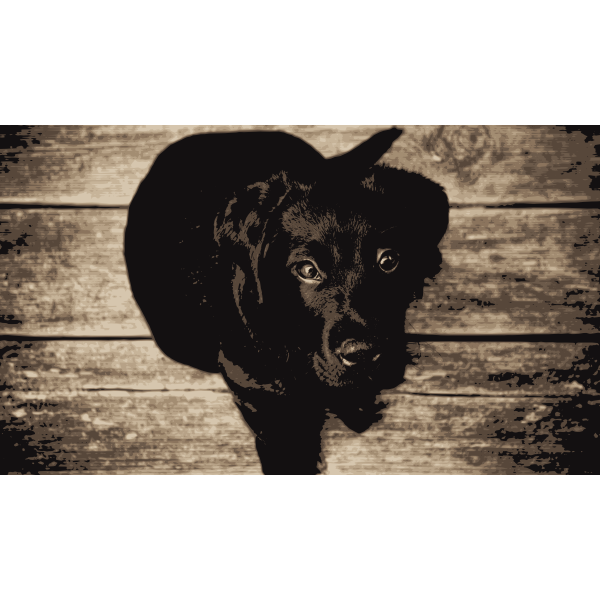 Labrador Retriever svg standing dog laser cut file 07 Labrador Retriever cut in White Print on black cricut labrador vector graphic art