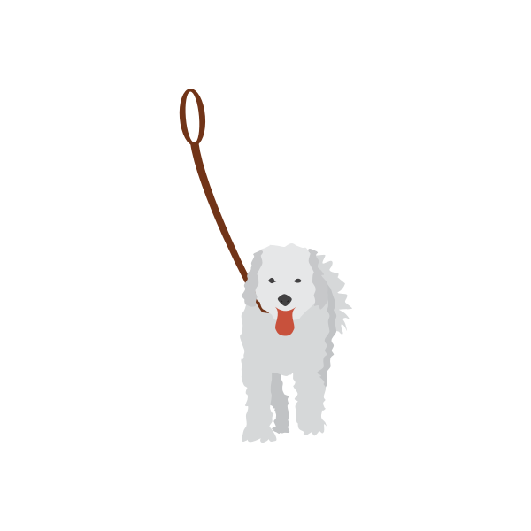 Vector image of a dog on a leash