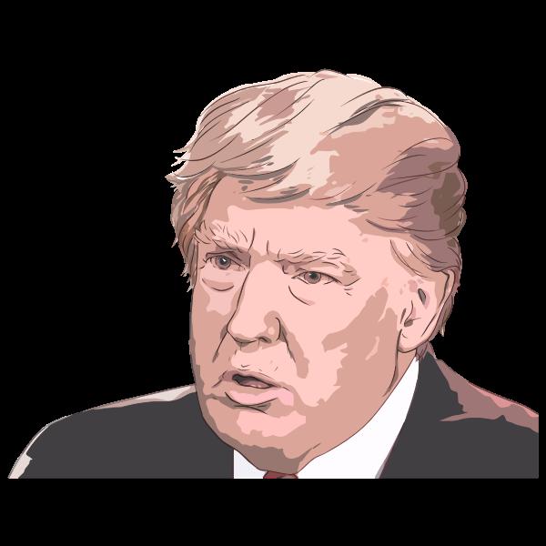 Donald Trump Portrait 3