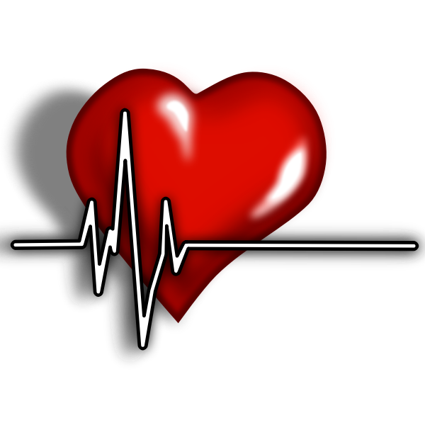 A heart with ECG complex vector illustration