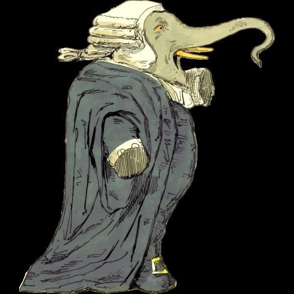 Elephant judge