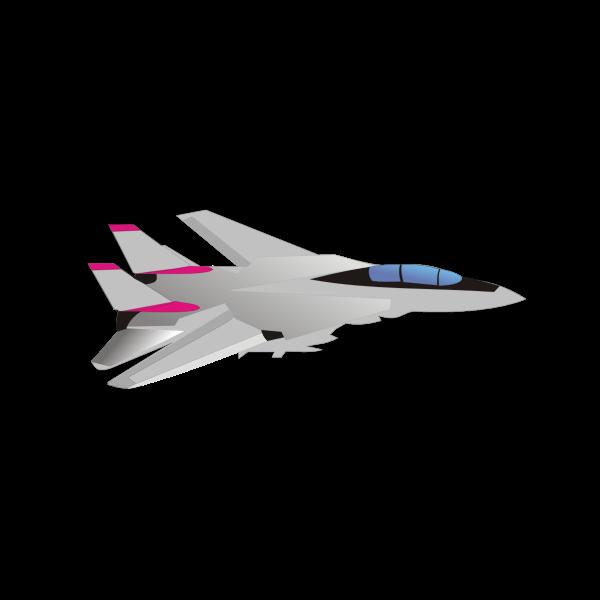 Grumman F-14 Tomcat aircraft vector image