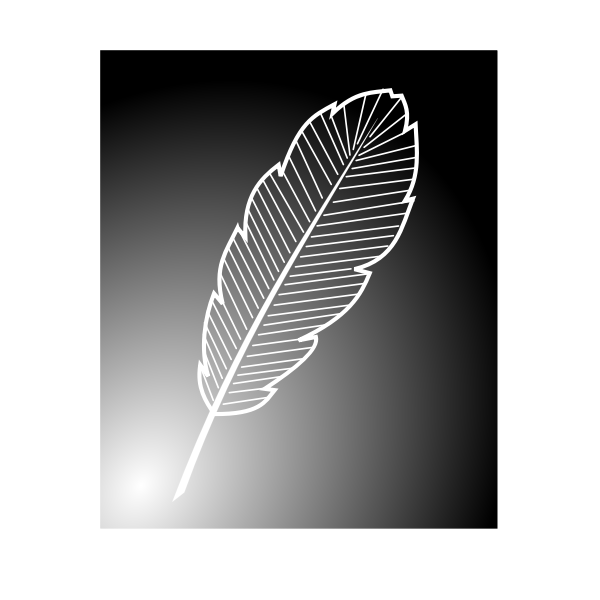 Inverted feather image