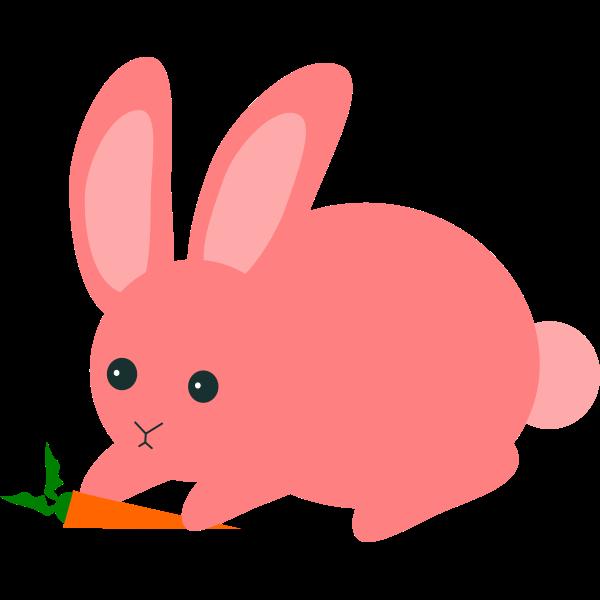 FX13 rabbit3