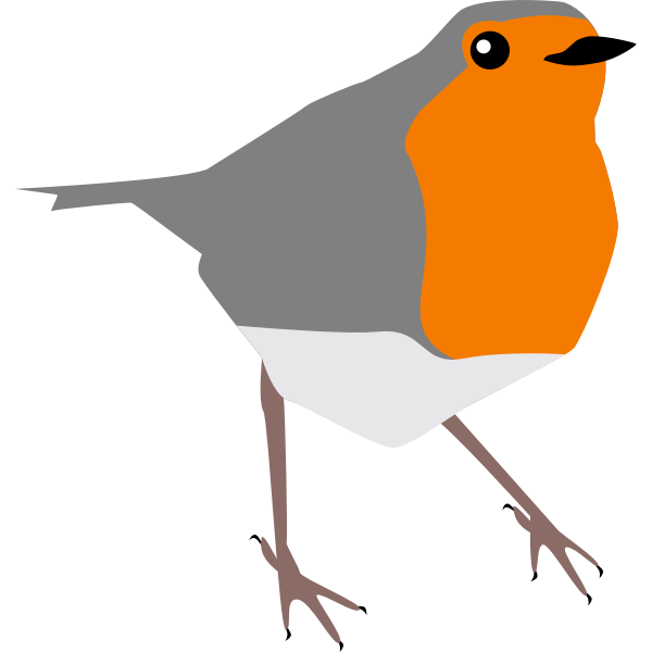 robin bird grey and orange