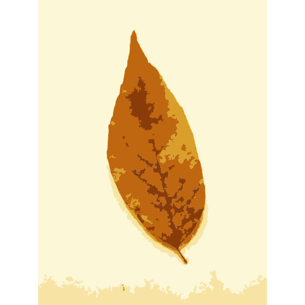 Fall leaves with color 2