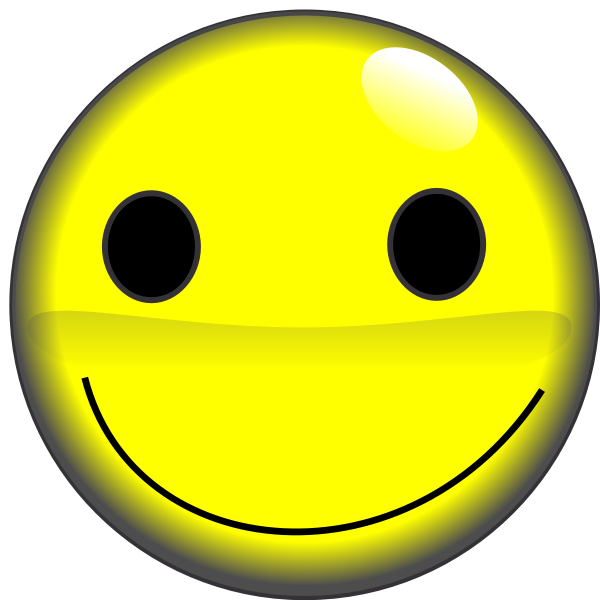 2D smiley face vector image