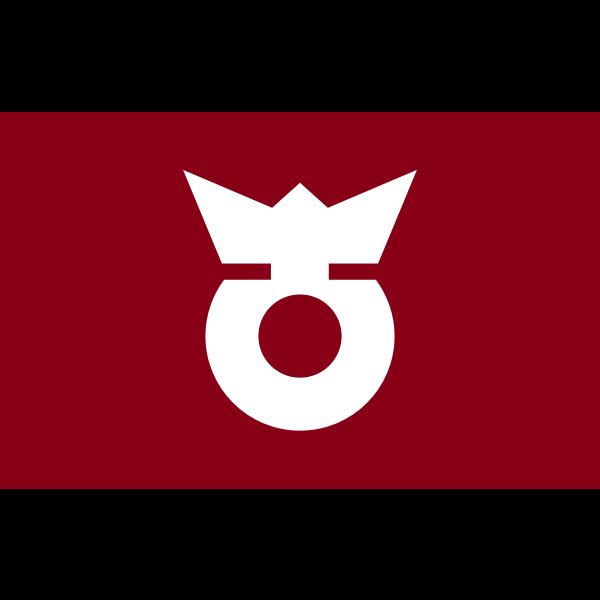 Flag of Koza, Wakayama