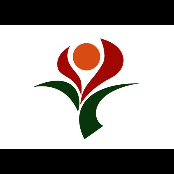 Flag of Soo, Kagoshima