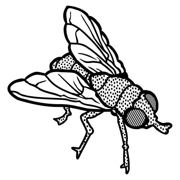 Fly line art vector clip art