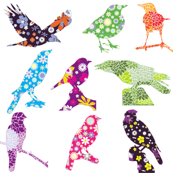 Vector graphics of selection of birds with a floral pattern