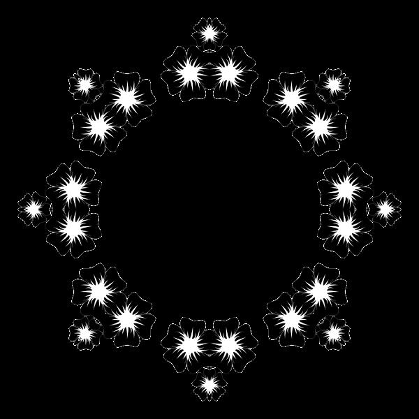 Flower Frame Extrapolated 24
