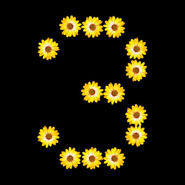 Floral number 3