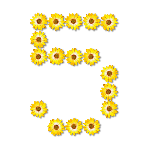 Floral number five