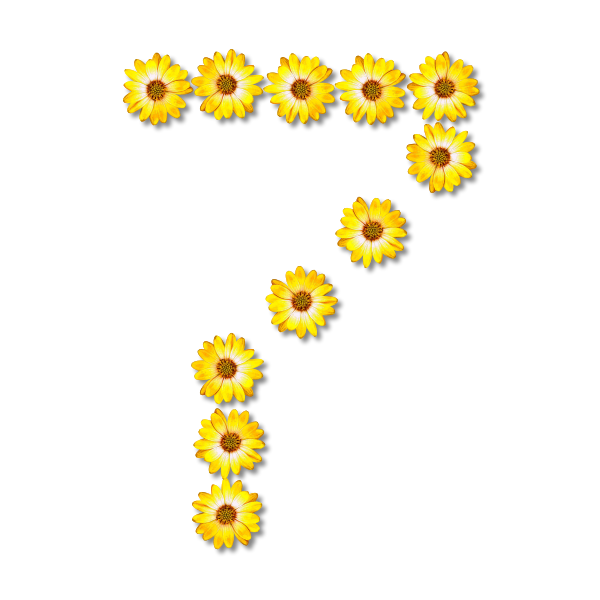 Flowery number seven
