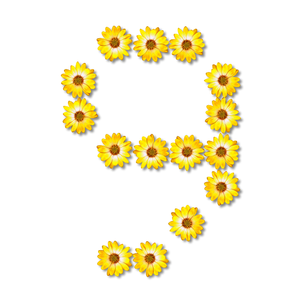 Yellow flowery number nine