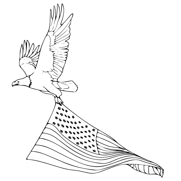 Vector line art illustration of bird of prey in flight with American flag