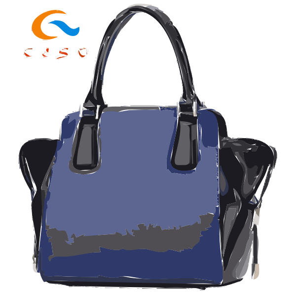 Fwd 2016 Newest Popular handbag designs from Ceso 32 2016022459
