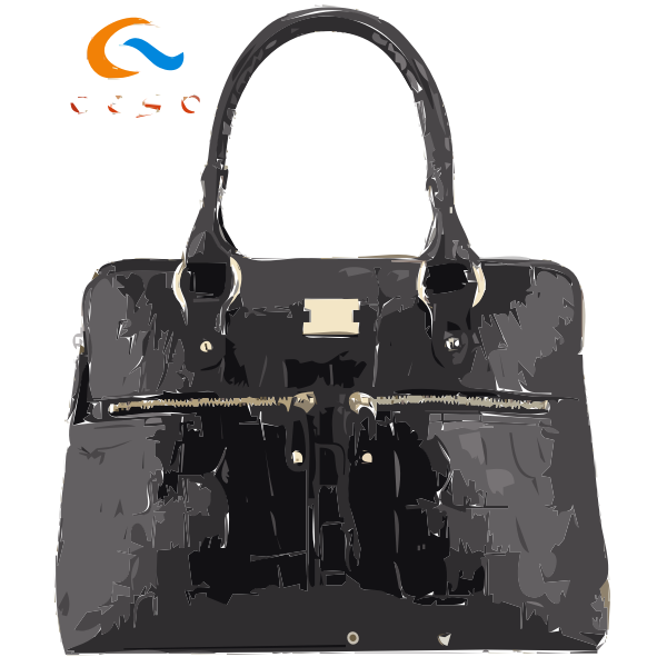Fwd 2016 Newest Popular handbag designs from Ceso 8 2016022459