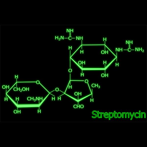Streptomycin structure