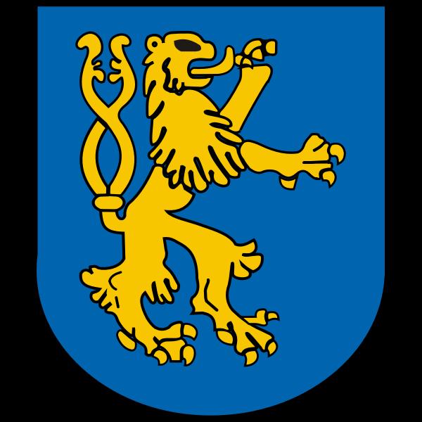 Heraldic shield vector graphics