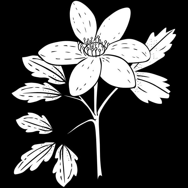 Simple flower image
