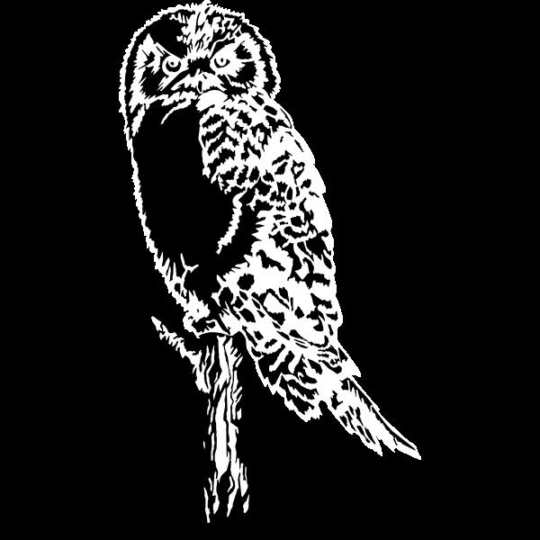 Owl (Stylized)