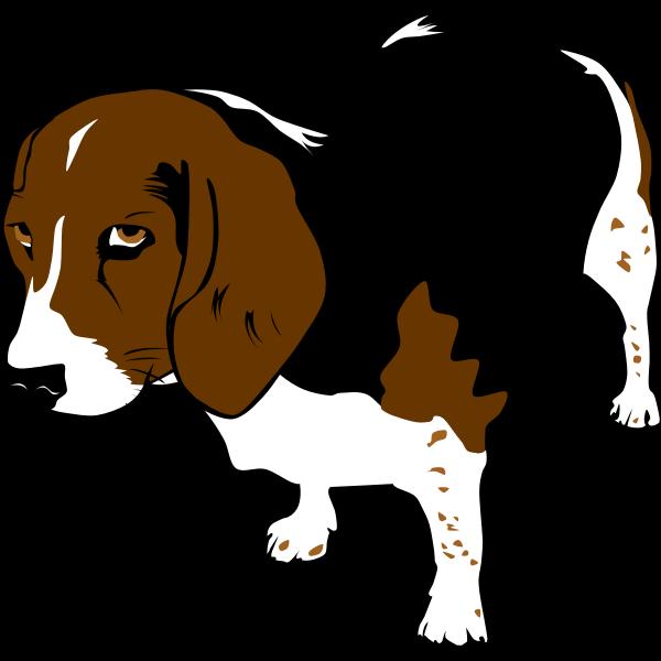 Beagle dog vector clip art