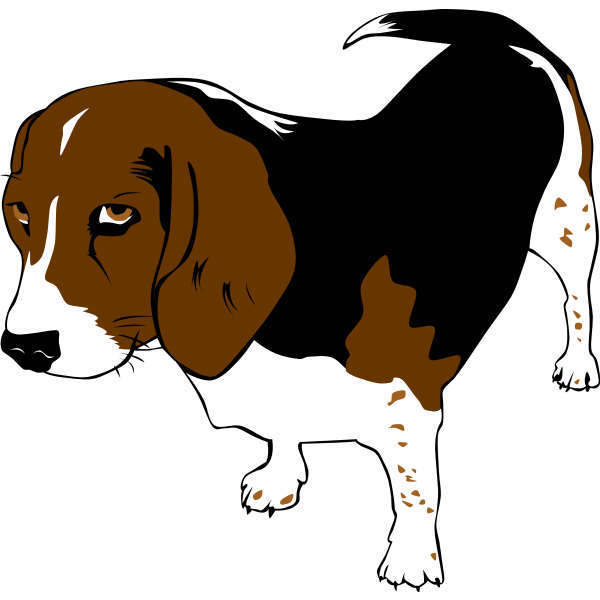Beagle dog vector clip art