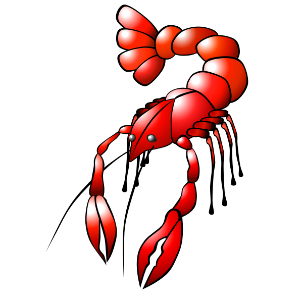 Red crawfish vector graphics