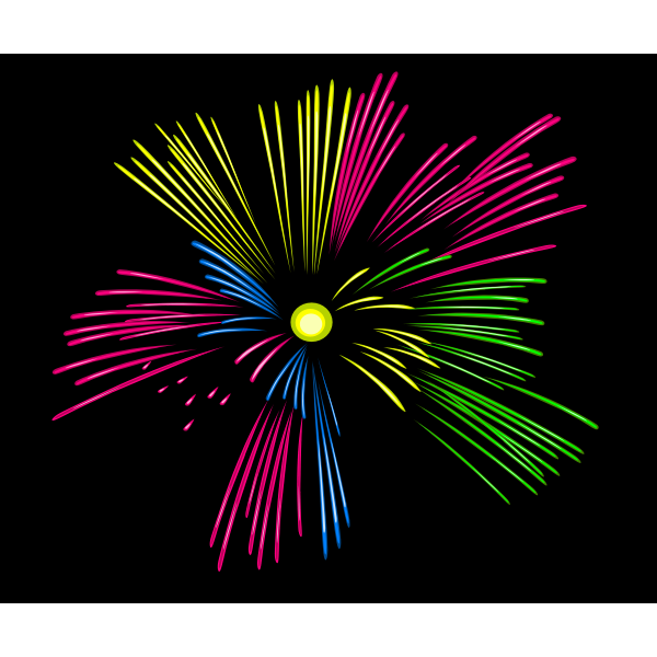 Fireworks vector drawing