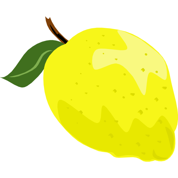 Lemon or lime vector graphics with leaf