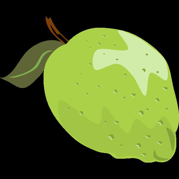 Lime vector illustration with leaf