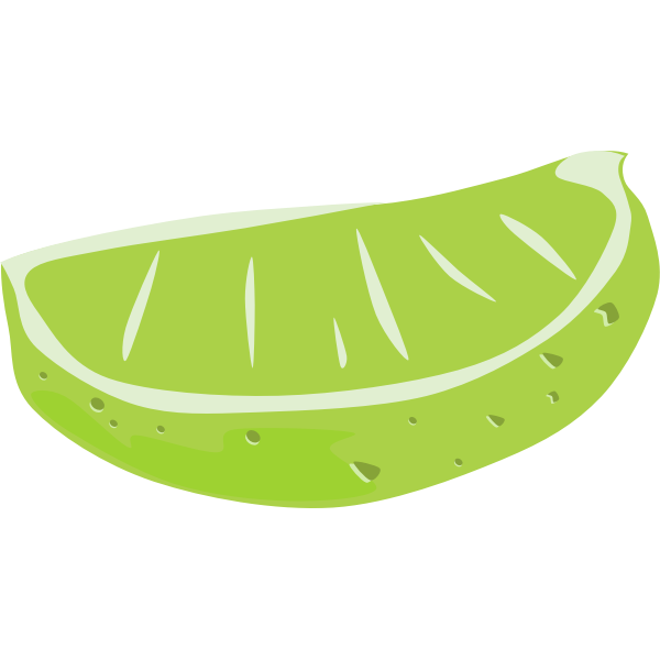 Sliced lime vector drawing
