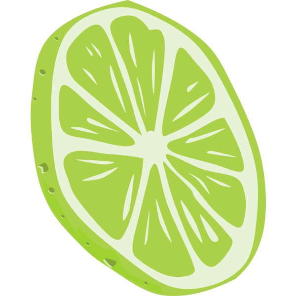 Lime vector drawing