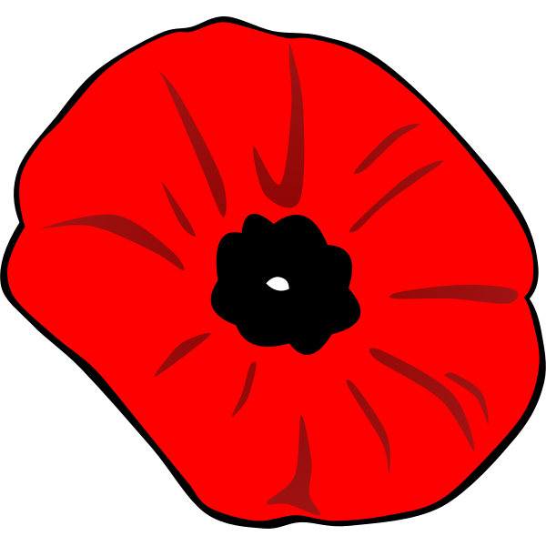 Remembrance Day poppy vector image