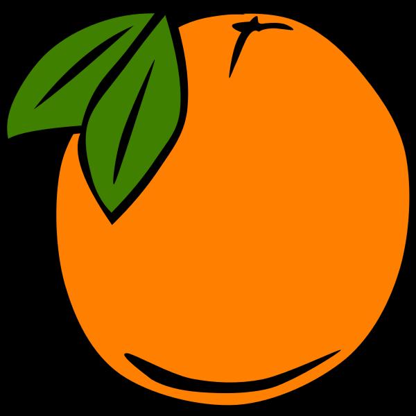 Orange vector graphics