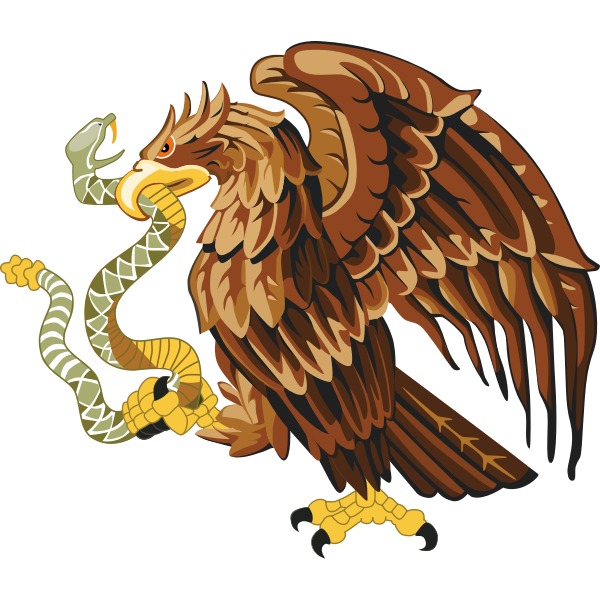 Golden eagle with snake