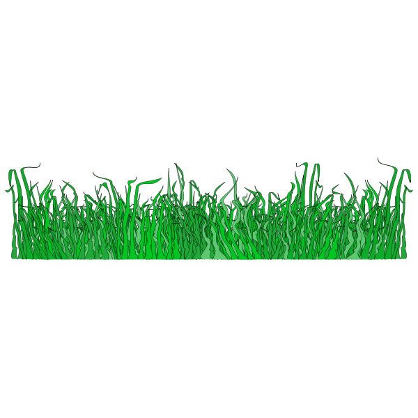 Grass for the lawn