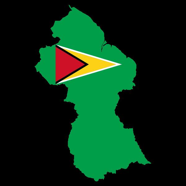 Guyana's flag