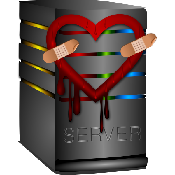 Vector graphics of heartbleed server