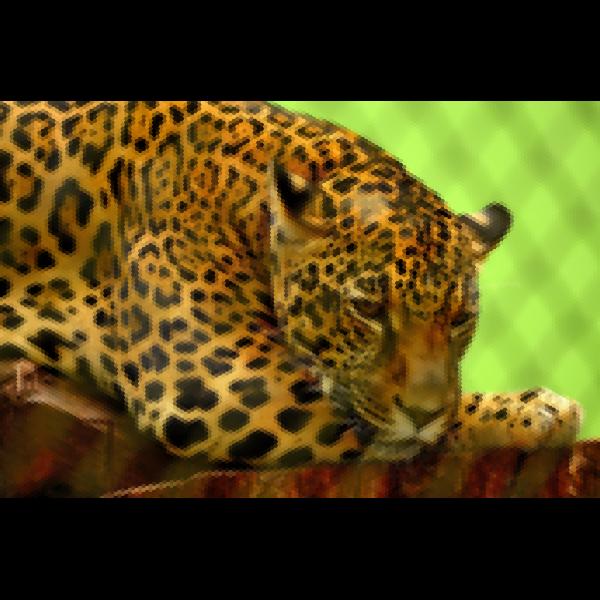 Hexagonal Jaguar Mosaic