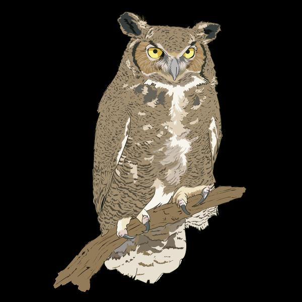 Standing owl