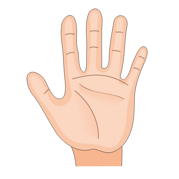 Human Hand Palm Inside Remix