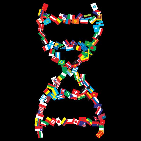 International DNA Helix